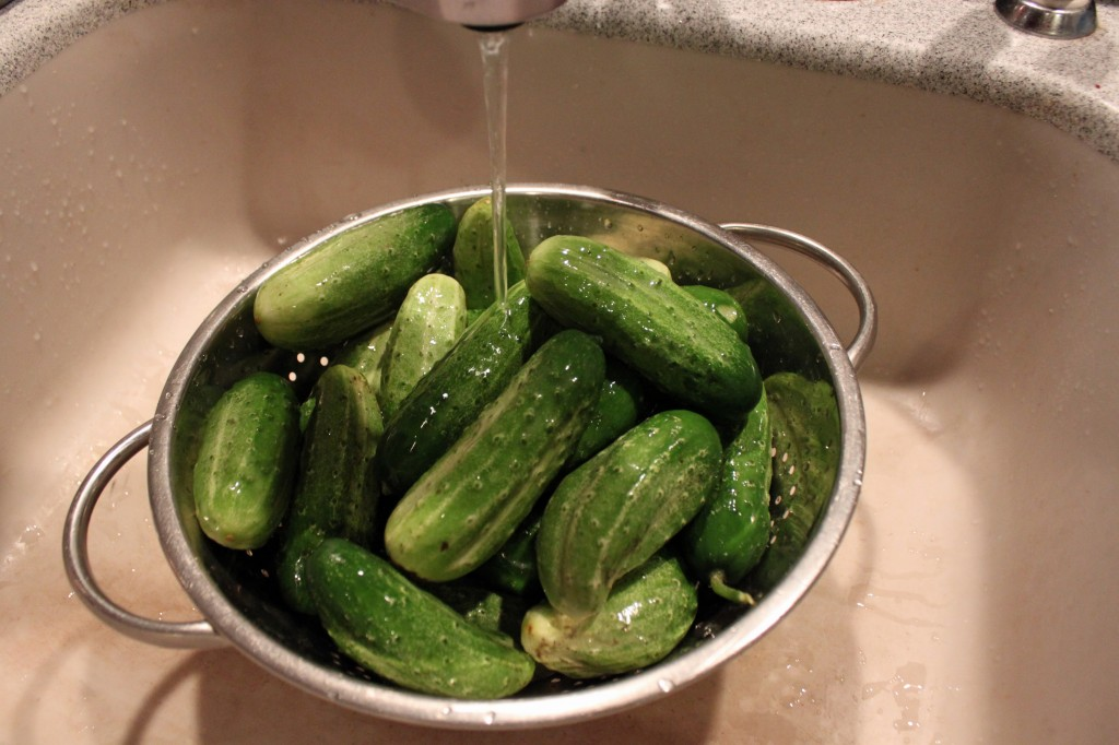 for pickles