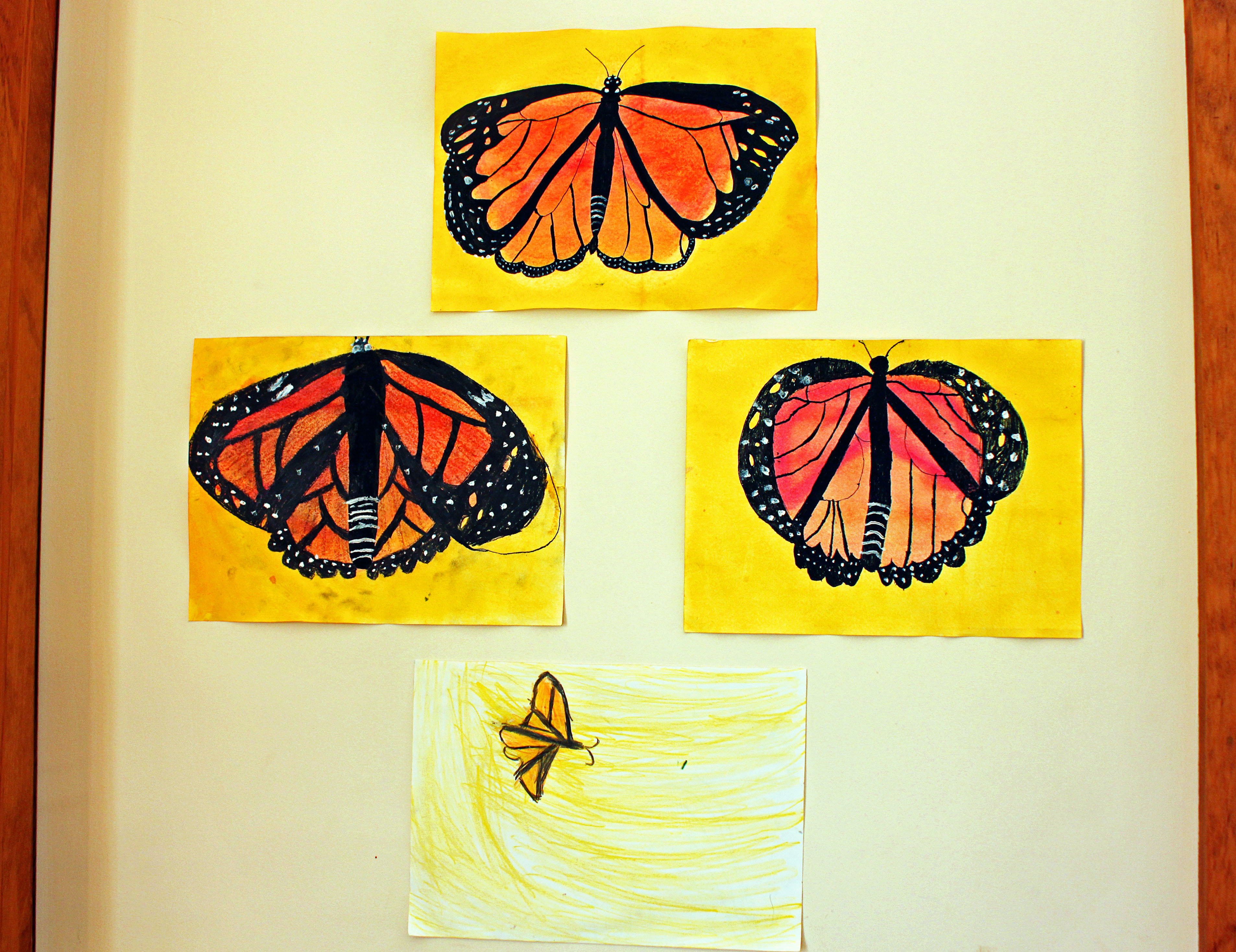 monarchbespoke bespoke